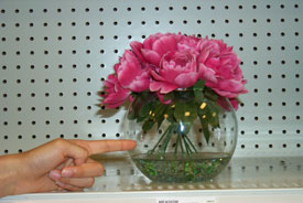shopper pointing directly at a bowl of flowers.