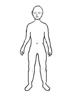outline of a human body